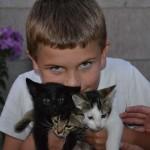 Boys Love Kittens Too..