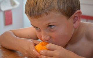 Fresh Peaches and Fresh Peach Dessert