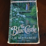 Lessons From The Blue Castle