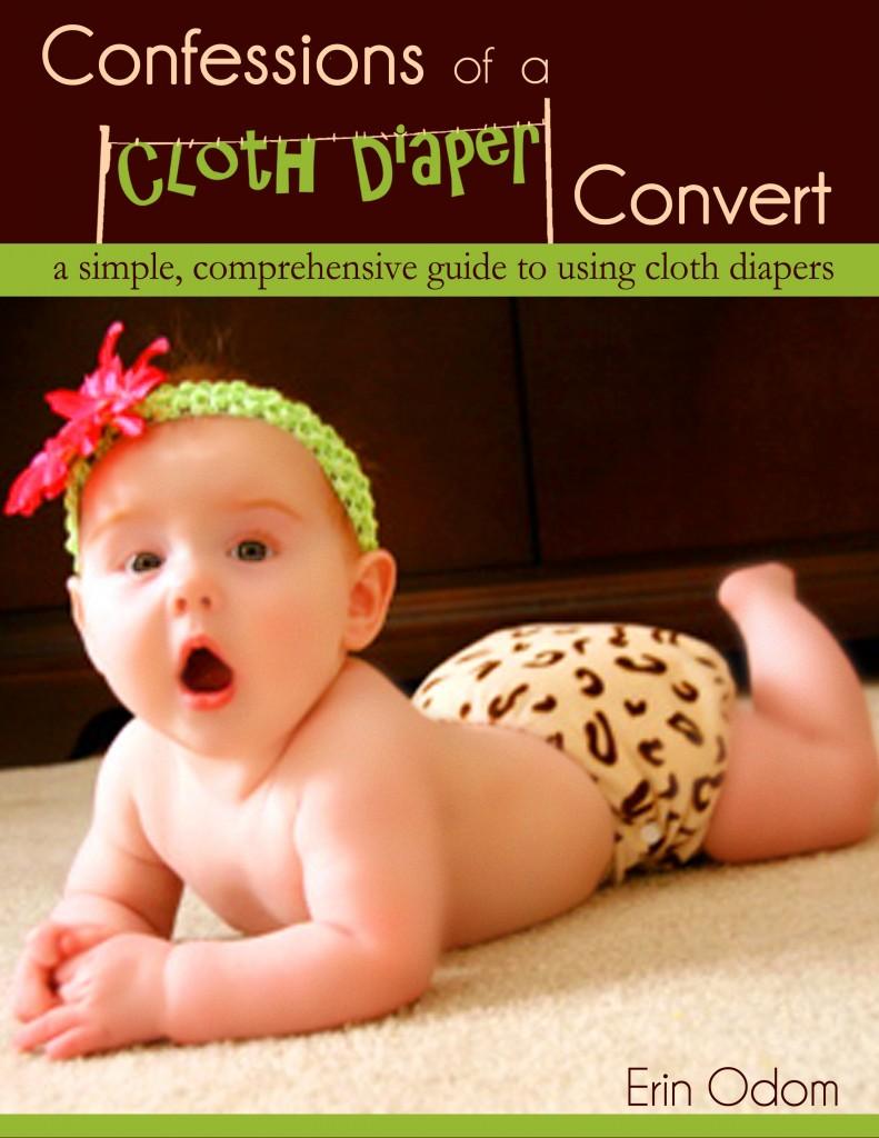 diaper ebook cover (clothesline2) copy - Copy - Copy