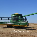 We Cut Soybeans 2014 {Part 1}