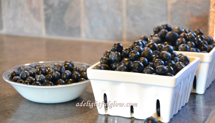 Ten Favorite Things To Do With Blueberries
