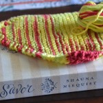 Yarn Along ~ Just a Dishcloth and Savor