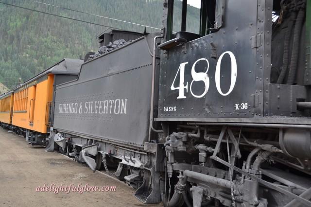 DSC_9354