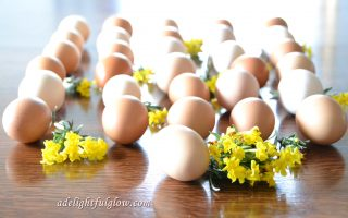 An Ordinary Monday and Eggs and Wildflowers