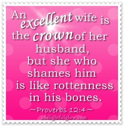 Excellent Wife