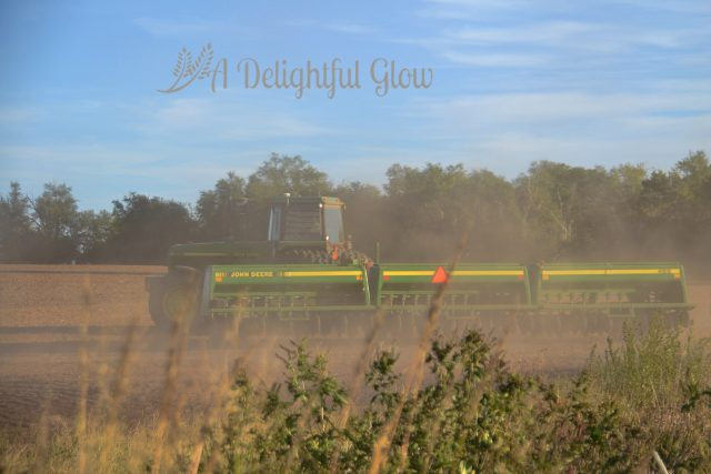 drilling-the-wheat-2016-2