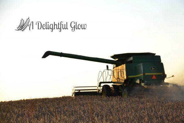 soybean-harvest-2016-11
