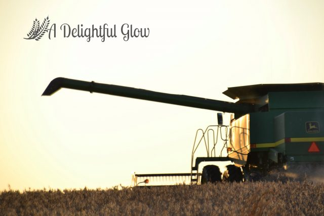 soybean-harvest-2016-12
