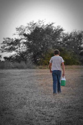 soybean-harvest-2016-13