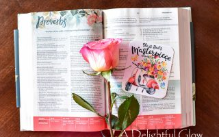 Celebrating With a CSB Womens Study Bible Giveaway