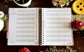 Looking For a Planner?