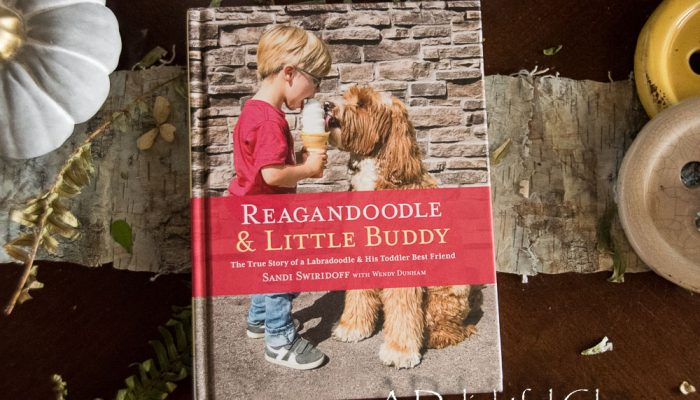 Pages and Projects {Reagandoodle and Little Buddy}